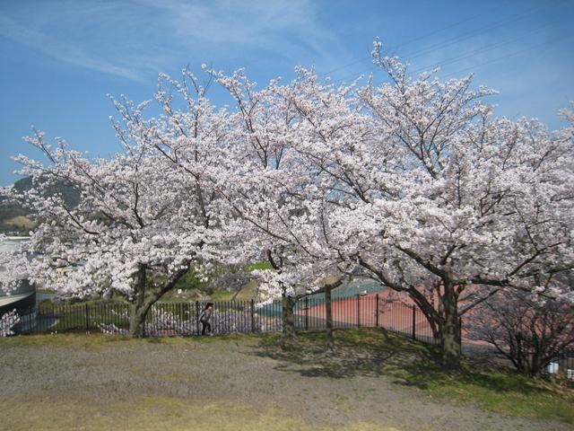 飯山運動公園