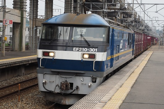 E7053781.jpg