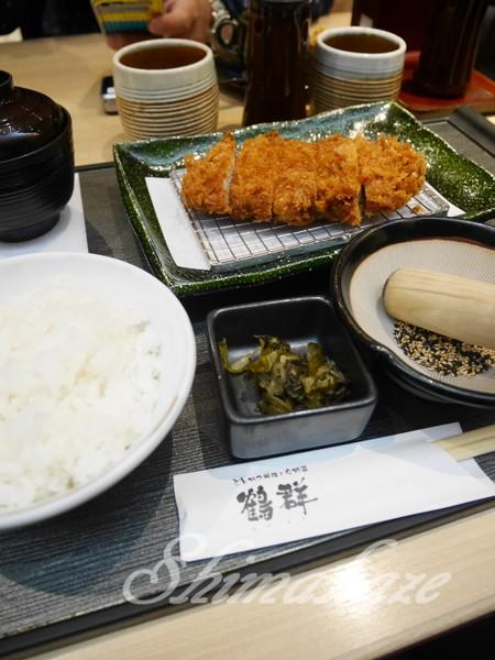 しまかぜ案内人日本旅行 2015年春