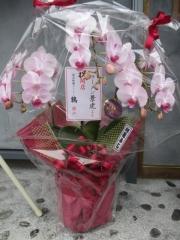 【新店】東京味噌らーめん 鶉-9