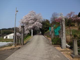 2014年04月27日 東源寺入口