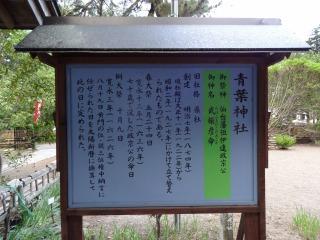 2014年05月17日 青葉神社6