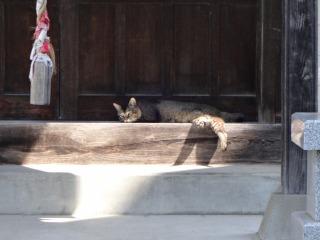 2014年08月13日 石留神社3
