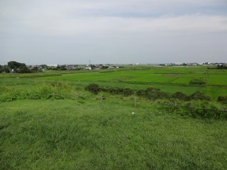 2014年08月13日 稲荷山古墳5