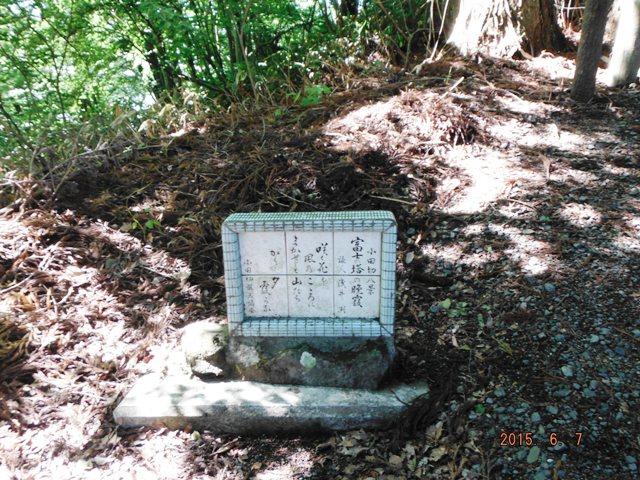 富士の塔砦 (6)