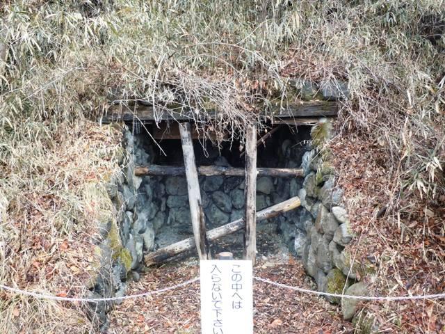 桜城 (4)