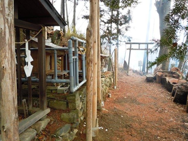 桜城 (10)