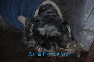 るーくDSC_1259