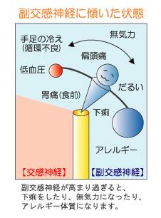yajirobe2.jpg