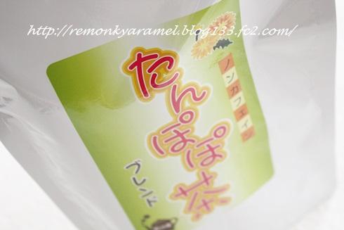 たんぽぽ茶1_
