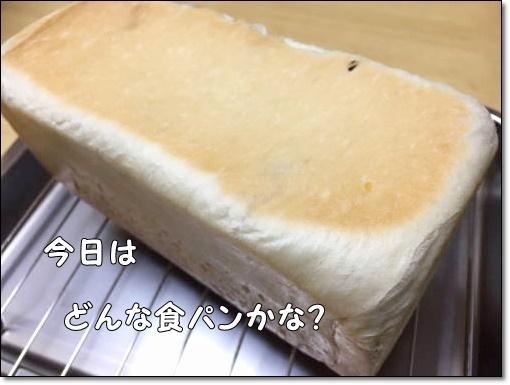 IMG_9168.jpg