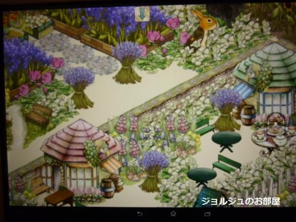 ピーターの庭1