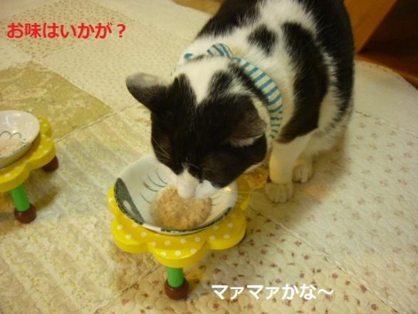手作りゴハン3