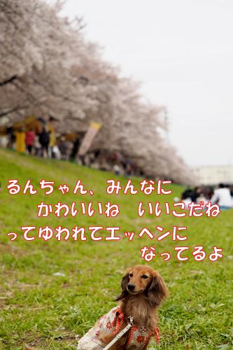150404-001.jpg