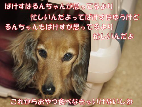 150409-001.jpg