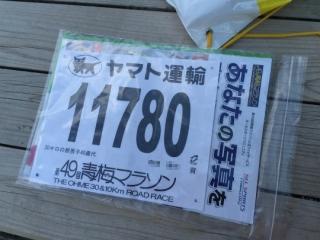 IMG_9110 処理