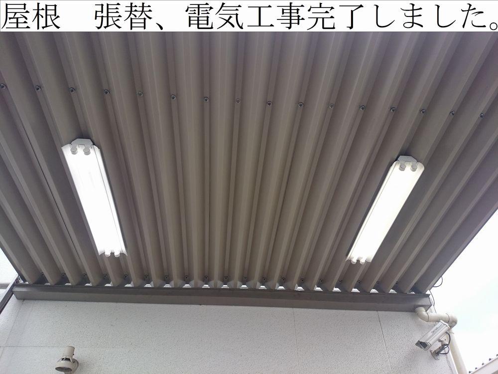 DSC_0476web.jpg