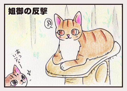 comic_4c_15070501.jpg