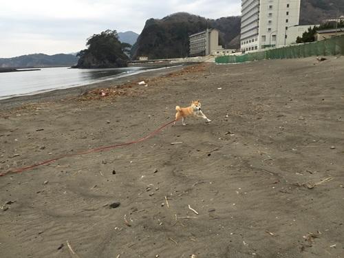 海で遊ぶ2