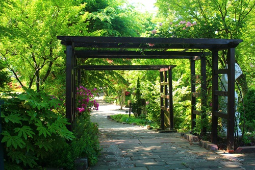 ハーブ庭園旅日記22