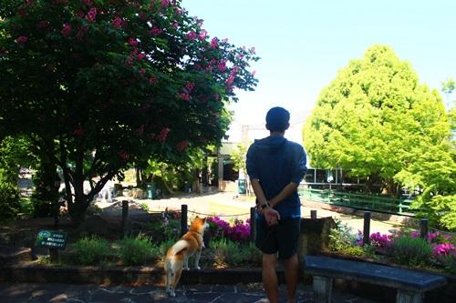 ハーブ庭園旅日記23