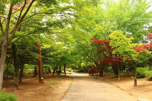 芸術の森5