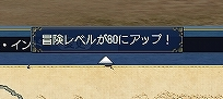 Level80orz.jpg
