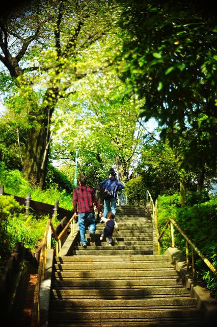 PO3-3Mと西郷山公園