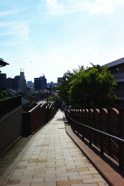 T2Sonnarと富士見坂