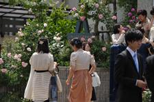 wedding2015517-2.jpg