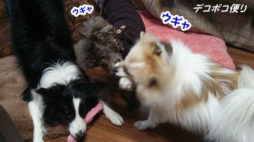 20150316 寝起き4