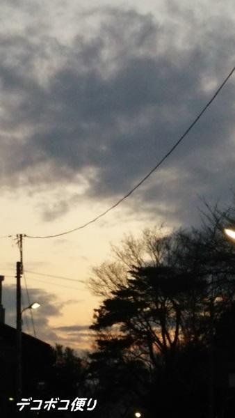20150319 夕方散歩で4