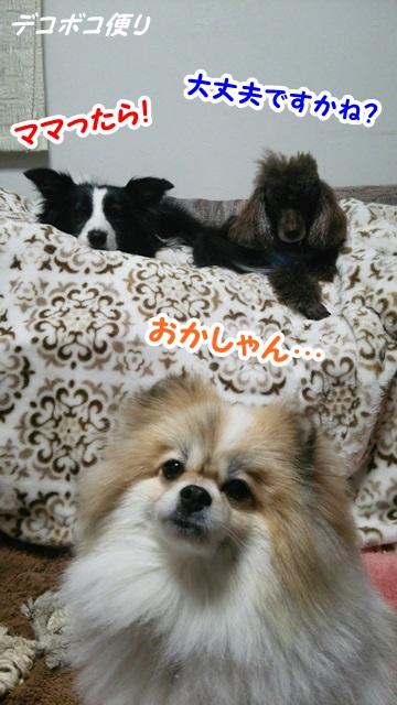 20150408 うっかり4