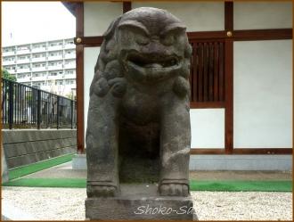 20150621  狛犬 2  バッサリ木のお寺