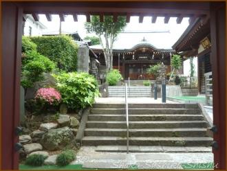 20150621  七面大明神堂   バッサリ木のお寺