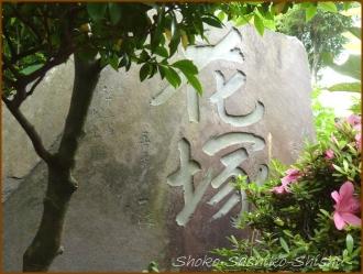 20150621  七面大明神堂 2   バッサリ木のお寺
