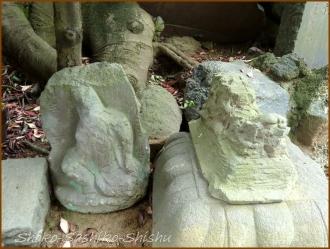 20150621  七面大明神堂 4   バッサリ木のお寺