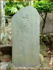 20150621  七面大明神堂 6   バッサリ木のお寺