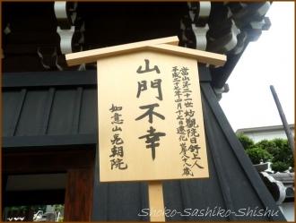 20150621  鐘楼堂 2  バッサリ木のお寺