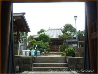 20150621  鐘楼堂 3  バッサリ木のお寺