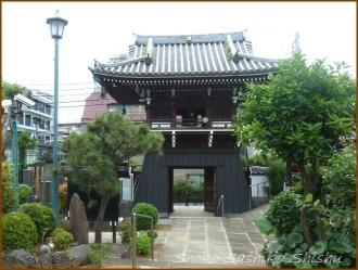 20150621  鐘楼堂 4  バッサリ木のお寺