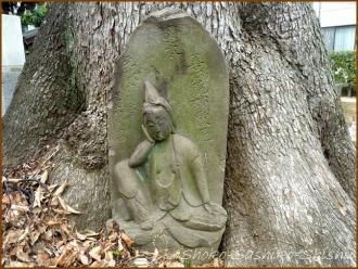 20150621  木 5  バッサリ木のお寺