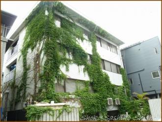 20150628  ビル 1の2 緑の館