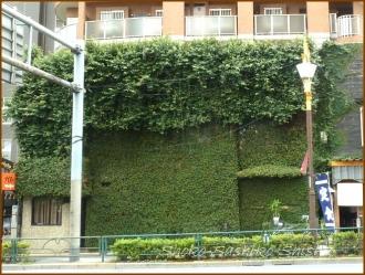 20150628  ビル 2の2 通り 緑の館