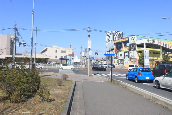 IMG_3018.jpg