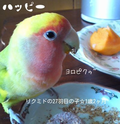 ハッピーちゃん