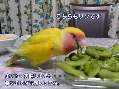食べてる食べてる!
