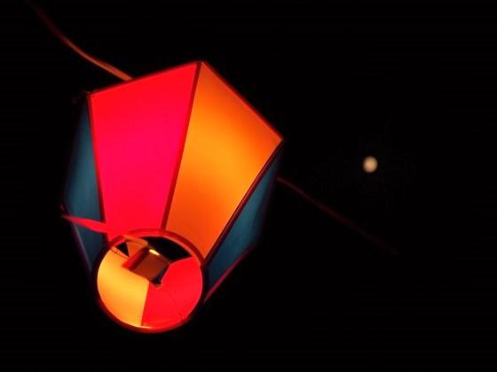 XC310320.jpg