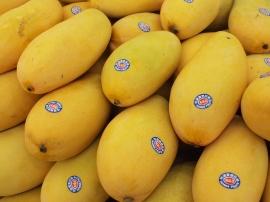 台湾夏のフルーツ5
