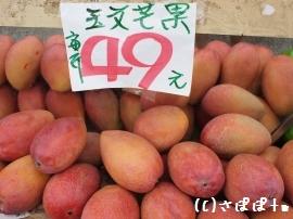 台湾夏のフルーツ8